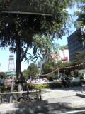 昼間の大通り公園