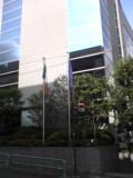 朝日を受けるアイルランド国旗