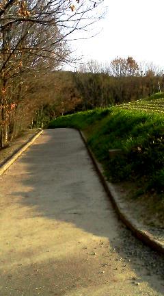 遠見の丘で2