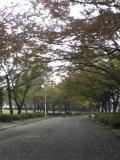 自然文化園(1)