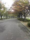 自然文化園(2)